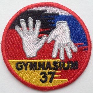 Гимназия № 37